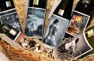 Dražba Vinařství roku